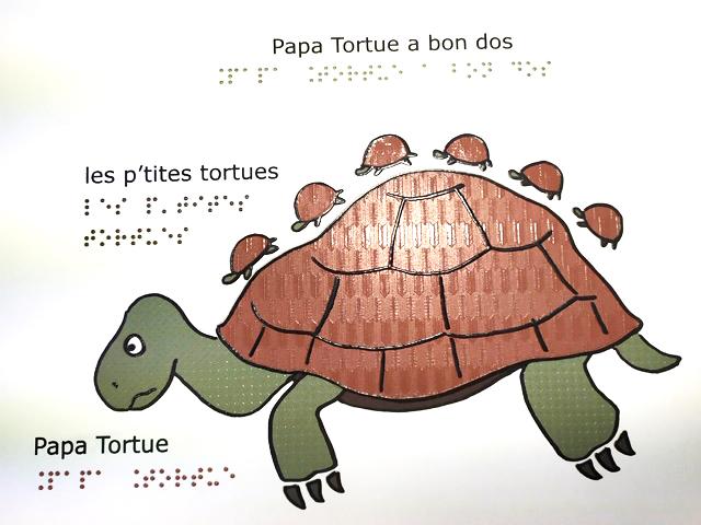 Illustration 3D Papa tortue et ses 7 petits sur le dos