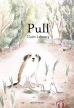 Couverture du livre Pull de Claire Lebourg